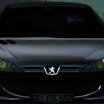 Lfs Peugeot 206